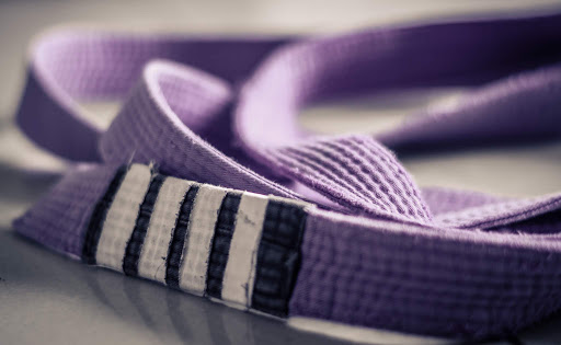 Purple Belt: Jack of All Trades